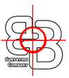 bandbsurveying